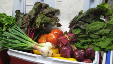 How to Eat Organic in Lansdowne, Pa | June's Journal image 1